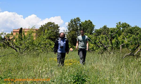 Parque Agrario del Bajo Llobregat. Parc Agrari del Baix Llobregat. /joseantonioarcos.es