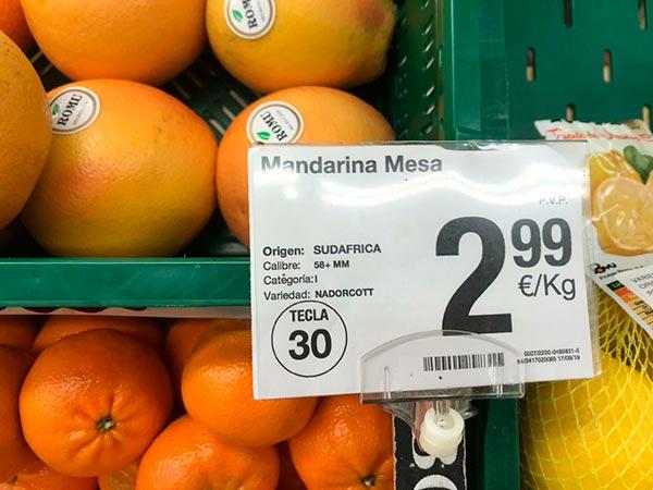 Cítricos de Sudáfrica en Nules. /joseantonioarcos.es
