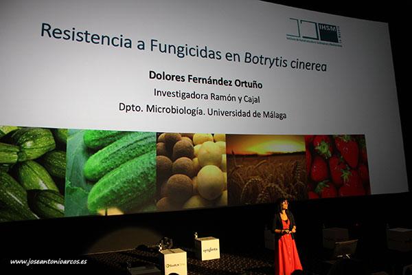Dolores Fernández Ortuño, investigadora de la Universidad de Málaga. /joseantonioarcos.es