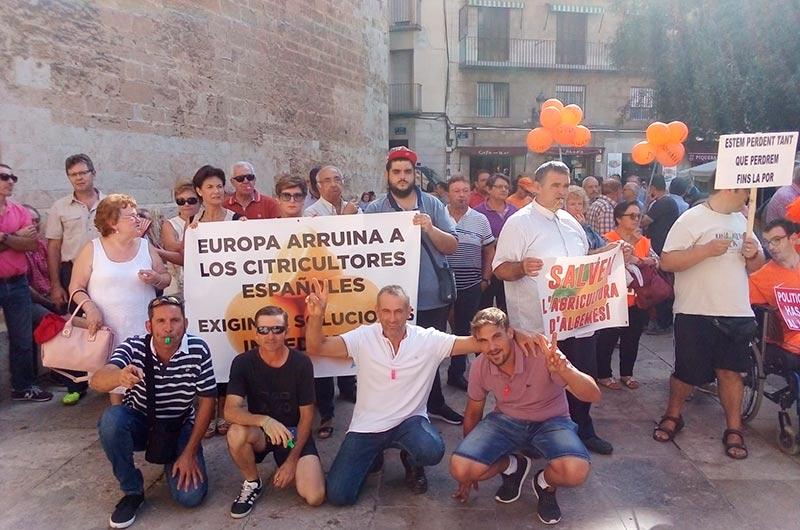 Los políticos españoles arruinan y no defienden a la agricultura española. /joseantonioarcos.es