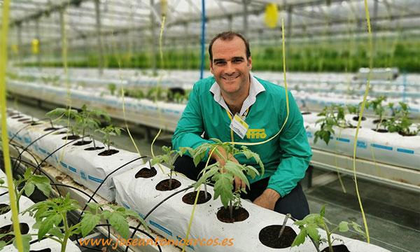 Francisco Fernández, responsable de operaciones en fincas de investigación de Semillas Fitó. /joseantonioarcos.es