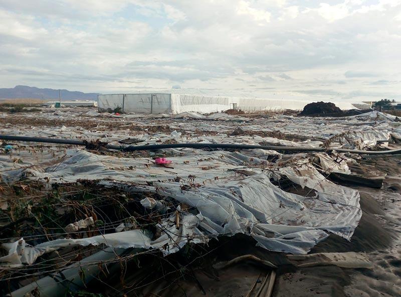 Invernaderos dañados por la gota fría que ha afectado al campo de Níjar y a Almería. /joseantonioarcos.es