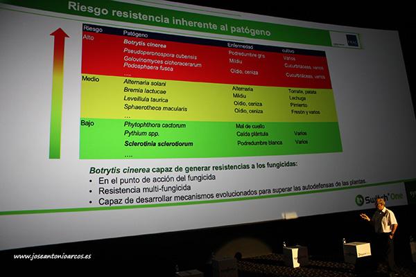 Juan Miguel Cantus, departamento de ensayos de Syngenta. /joseantonioarcos.es
