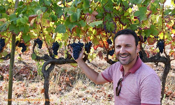 Rodrigo Martins, Portugal. Vinos y viñedos. /joseantonioarcos.es