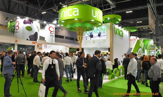 UNICA quiere convertirse en referente de la alimentación saludable y para ello sigue dando pasos en su estrategia para promover el consumo de frutas y verduras-joseantonioarcos.es