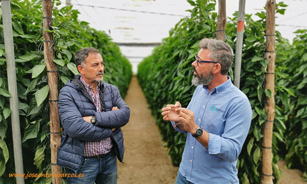 Juan Sánchez de Nostoc Biotech con el agricultor Paco Jiménez Cara. /joseantonioarcos.es