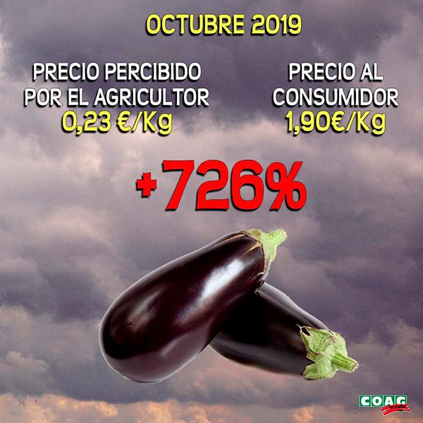 La berenjena sufre un diferencial de precios del 726%. /joseantonioarcos.es
