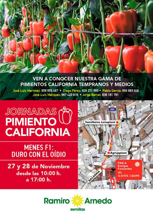 Pimiento california de Ramiro Arnedo-joseanotnioarcos.es