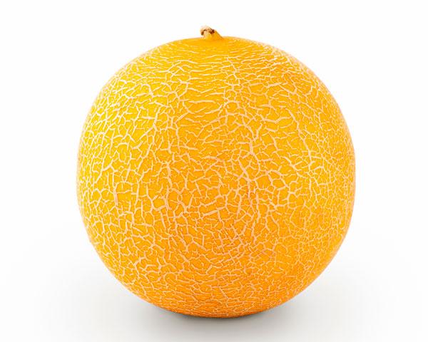 Melon galia Sidonia para invernadero de Semillas Fitó-joseantonioarcos.es