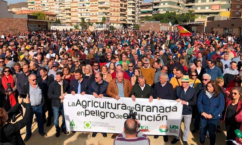 #AgriculturaEnExtincion19N Motril, Granada. /joseantonioarcos.es