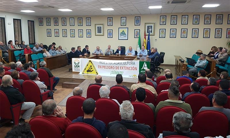 Agricultores de Málaga se concentran por precios justos. /joseantonioarcos.es