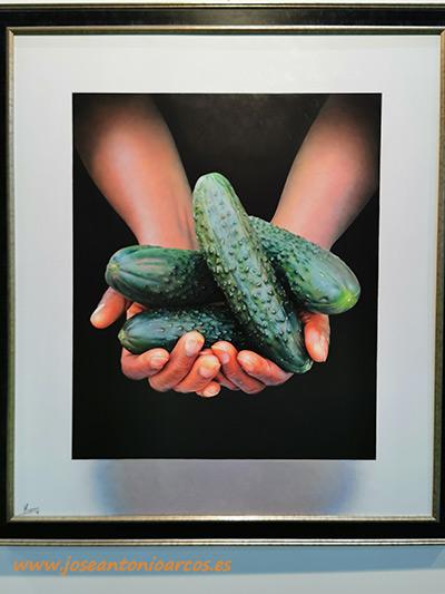 Pintor hiperrealista Manuel Higueras. Colección de Arte. Mis Manos. Mi Vida. /joseantonioarcos.es
