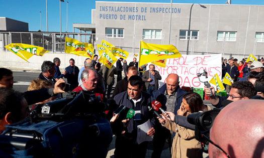 Andrés Góngora, secretario de frutas y hortalizas de Coag. /joseantonioarcos.es