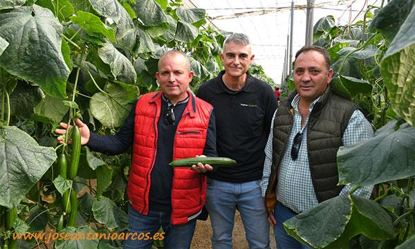 El propietario de la finca, Manuel José Garzón, muestra algunos frutos de la variedad Valdemar. /joseantonioarcos.es
