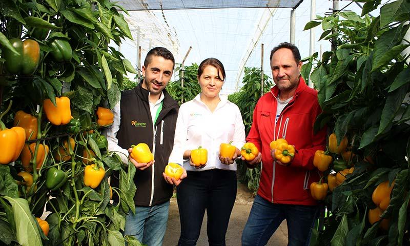 José David Ávila, Ana Garcés y José Andrés Montoro con la variedad Gerónimo. /joseantonioarcos.es