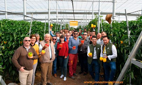Productores de pimiento en Berja con casa de semillas de HM Clause-joseantonioarcos.es