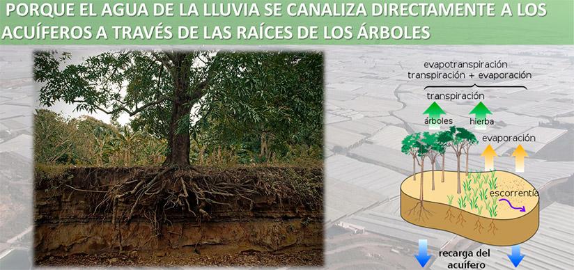Recarga de los acuíferos del Poniente almeriense. /joseantonioarcos.es