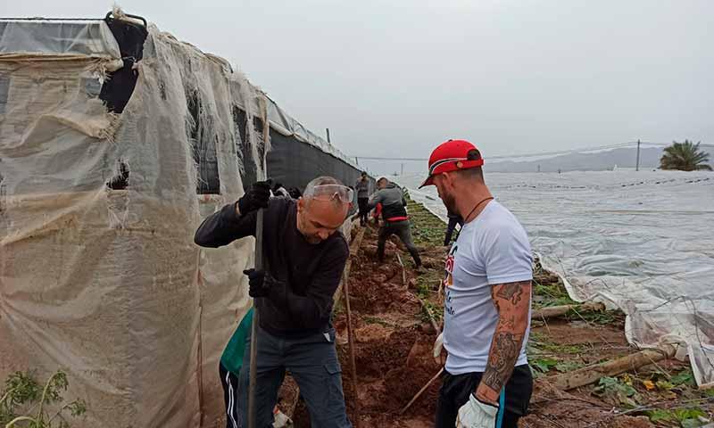 Agricultores de la Unión de Agricultores Independientes colaboran en las tareas de reconstrucción de invernaderos tras los daños de la borrasca Gloria en Campohermoso. /joseantonioarcos.es