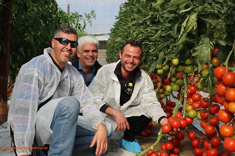 Jornadas de tomate de Ramiro Arnedo. /joseantonioarcos.es
