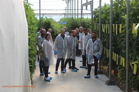Agricultores almerienses en la jornada de tomate Sotomayor de Hazera. /joseantonioarcos.es