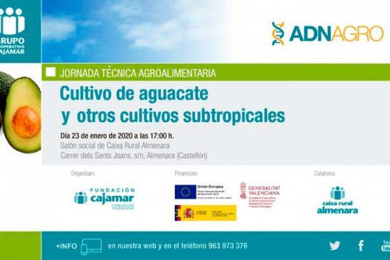 Día 23 de enero. Jornada 'Cultivo del aguacate y subtropicales'