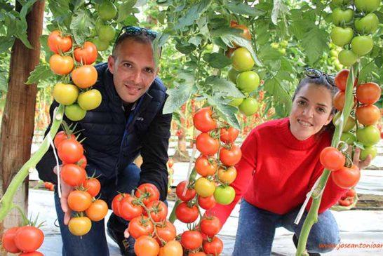 Ramiro Arnedo se estrena en tomate