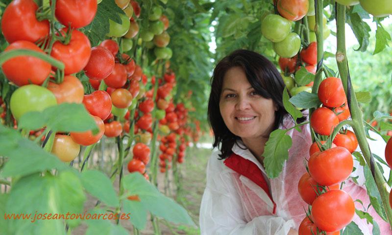Ana Garcés, técnica comercial de Hazera. /joseantonioarcos.es