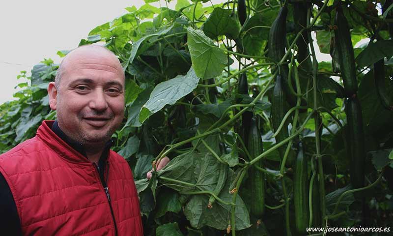 El agricultor Antonio Toro. /joseantonioarcos.es