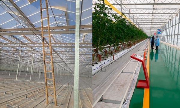 Invernaderos de alta tecnología con calefacción en China-joseantonioarcos.es