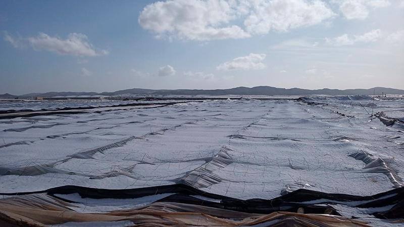 Pascual Soler recorre la zona afectada por el granizo en Campohermoso. /joseantonioarcos.es