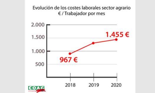 Efectos de la subida del Salario Mínimo Interprofesional (SMI) en la agricultura. /joseantonioarcos.es