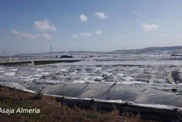 Un agricultor de Campohermoso fallece durante una granizada