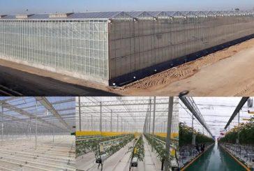 Tecnología almeriense en el invernadero más tecnificado de China