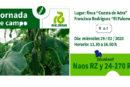 Día 29 de enero. Jornada de pepino de Rijk Zwaan