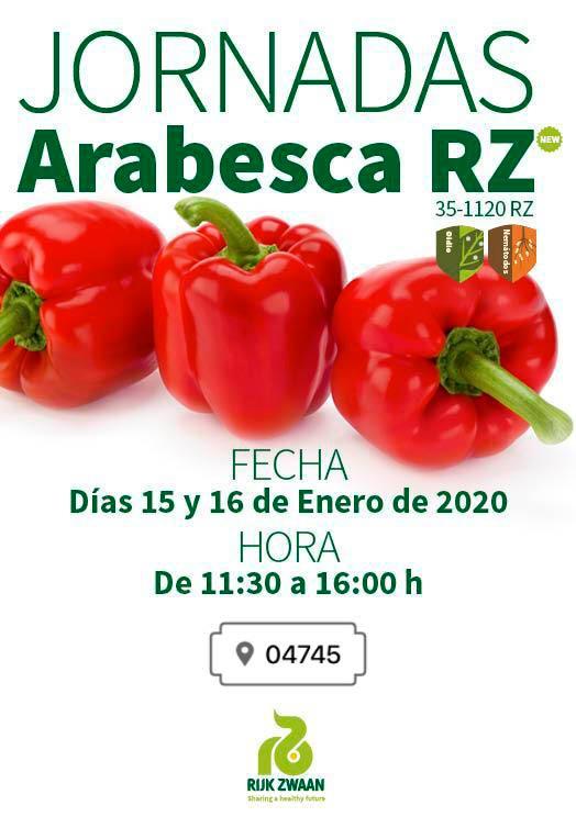 Pimiento california rojo Arabesca de Rijk Zwaa-joseantonioarcos.es