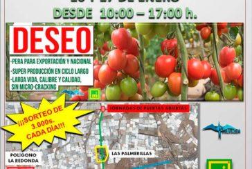 Días 16 y 17. Jornadas de tomate de Huertasem