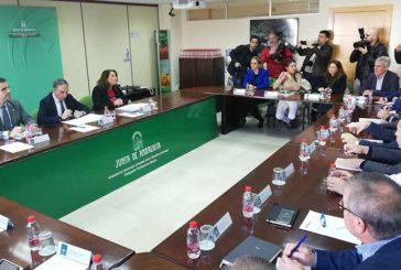 La Junta cree posible abrir nuevos mercados para salir de la crisis