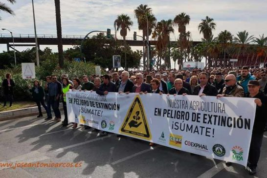 Asaja, Upa y Coag ultiman manifestaciones conjuntas