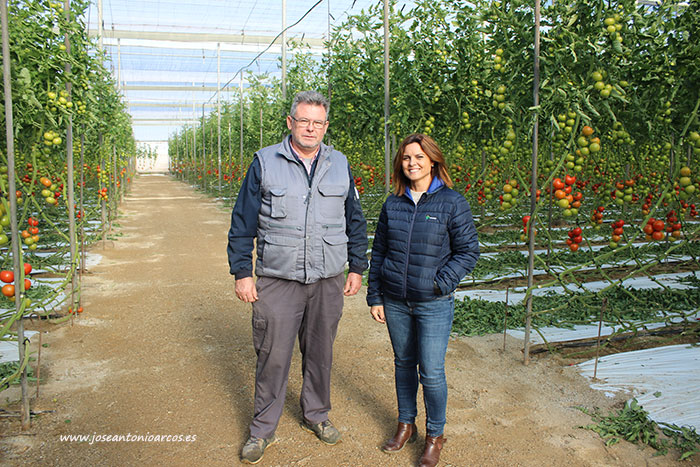Mari Cruz Martínez con José María Sánchez. La técnica agrícola de Viagro y el agricultor de tomate. /joseantonioarcos.es