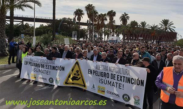 Manifestación de agricultores el 19N en Almería. /joseantonioarcos.es