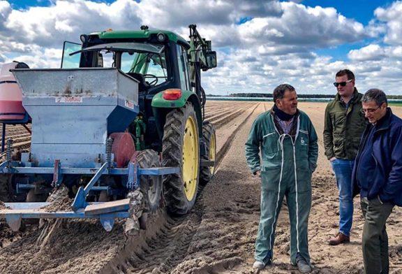Koppert extiende el control biológico en cultivos de calle
