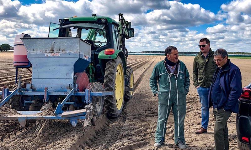 Control biológico en los cultivos al aire libre gracias a los microorganismos beneficiosos-joseantonioarcos.es