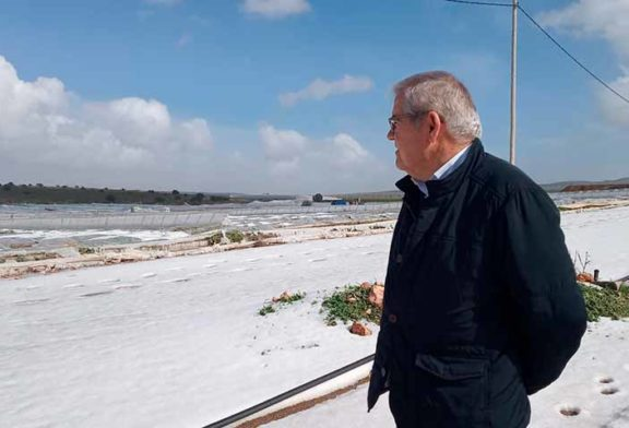 90 millones de euros por los suelos