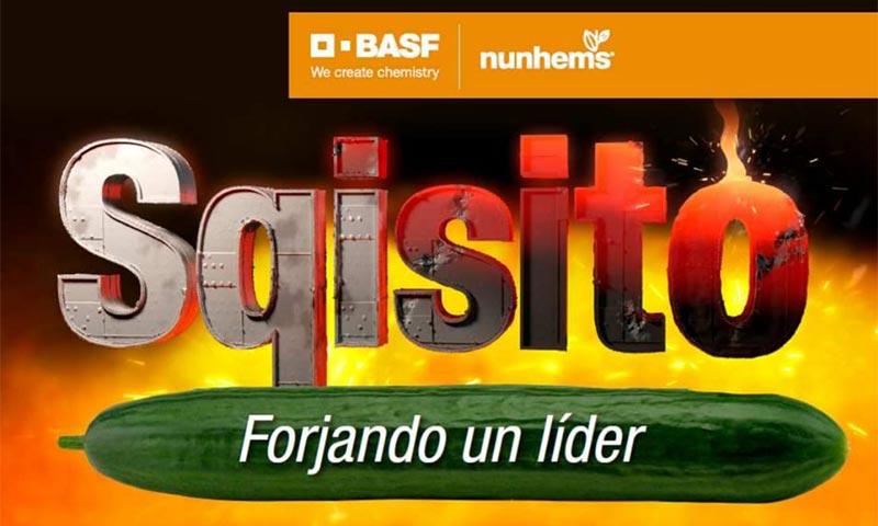 Pepino Sqisito de Nunhems y BASF-joseantonioarcos.es