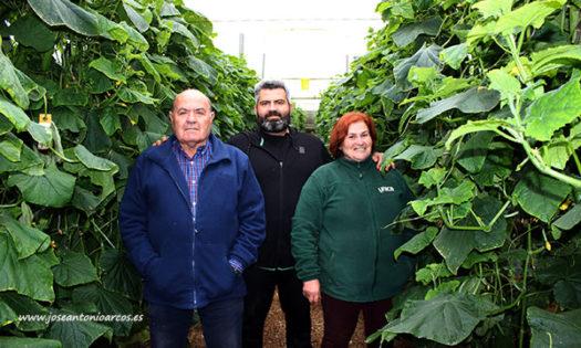 Agricultores en las jornadas de pepino de Nunhems. /joseantonioarcos.es