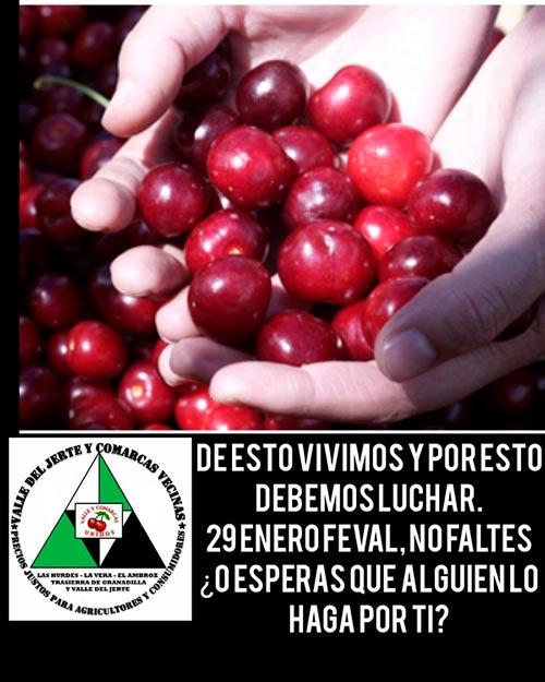 Protestas de agricultores del Valle del Jerte-joseantonioarcos.es