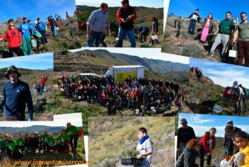 Almería se vuelca en la reforestación de la sierra de Gádor