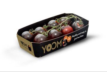 Yoom, nominado en Berlín como tomate más innovador