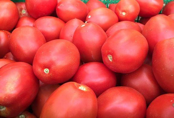 Ensayos para adelantar la coloración en tomate y pimiento