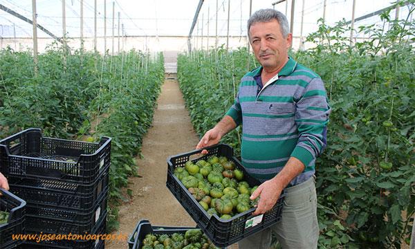 Antonio Lorenzo, agricultor almeriense. /joseantonioarcos.es